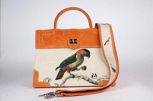 Marquise daim mandarine double Perroquet 8760