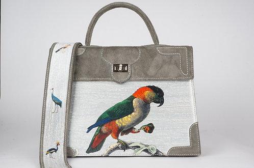 Médicis daim gris  Les perroquets 8387