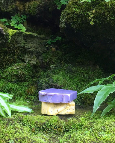 Meanwhile, out in the jungle_ ... 🌲⭐️=☀️💧💜🌱🛁 ._._.jpg