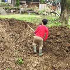唐突に穴を掘り始めました。
