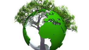 Vous souhaitez agir sur vos risques et sur les enjeux environnementaux et financiers associés...