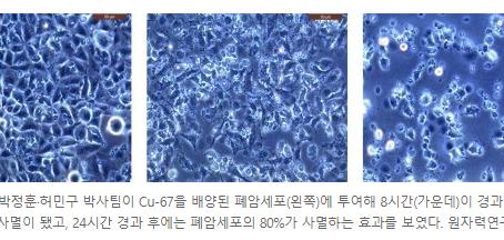 폐암세포 80%를 죽였다 온라인바둑이