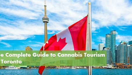 Best cannabis related activities in Toronto - by 10buds.com