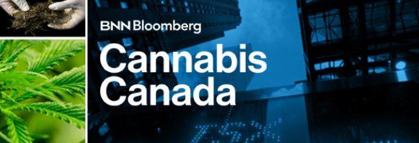 Matt Cronin Live Interview BNN Bloomberg