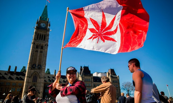 Canada becomes second country to legalise cannabis use!!!Let the implementation begin🤙Cannabis Act