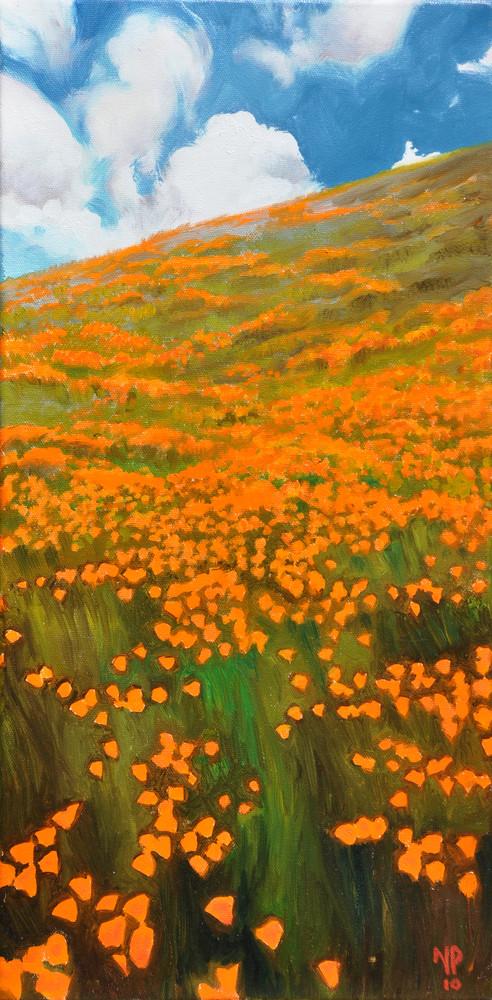 orangeField.jpg