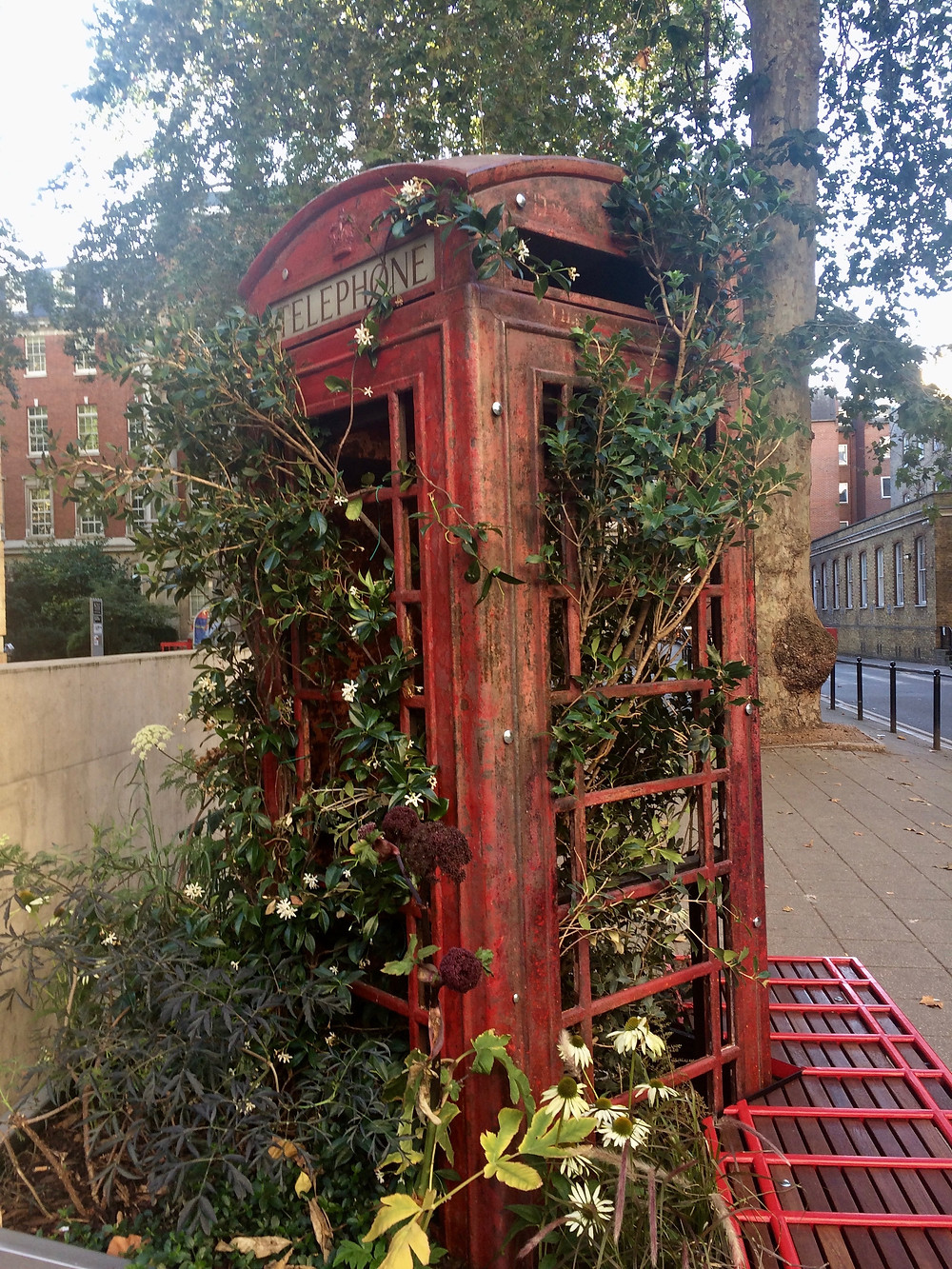 A reclaimed phone box in the King's College quad
