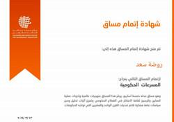روضة سعد - المُسَرِّعات الحكومية