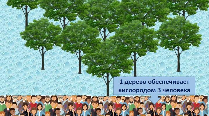 """Плакат «А сколько птиц и деревьев спасёшь ты?», ГУО """"Средняя школа №12 г. Гродно"""", Интеллектуальное объединение  «Школа рачительных хозяев»"""