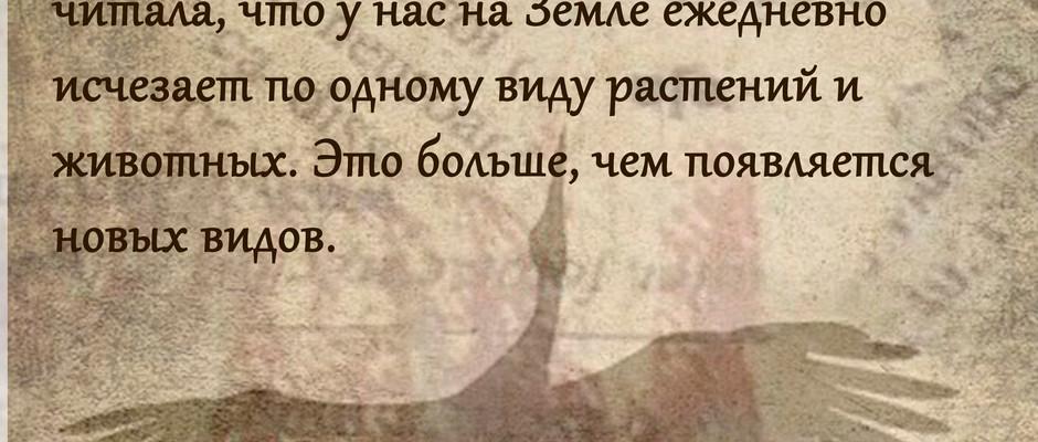 """Постер """"Сбережем наш общий дом"""", ГУО """"Средняя школа им. Я.Купалы №19 г. Минска"""""""