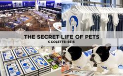 THE SECRET LIFE OF PETS X COLETTE