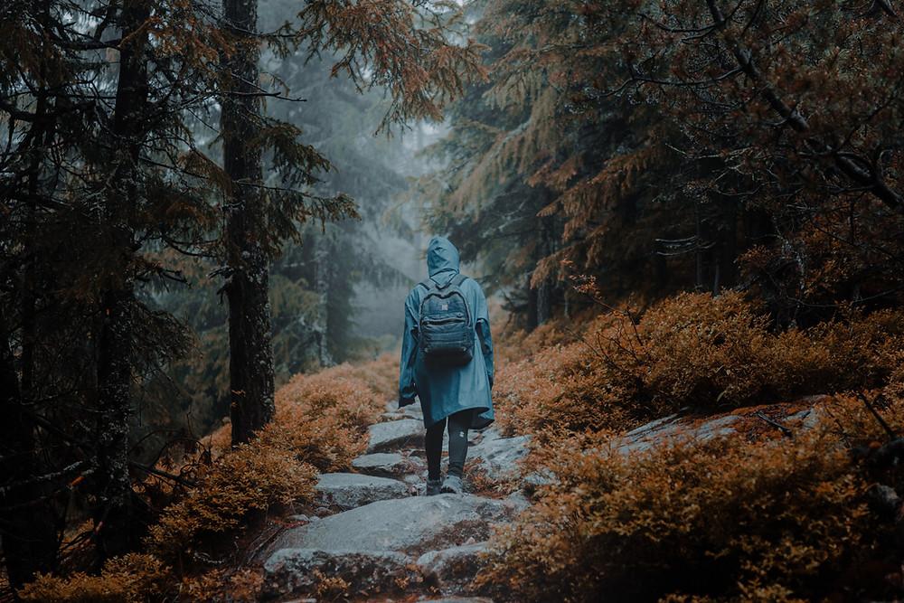 hike in the rain, rainy day activity