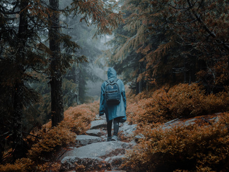 How to Make Hiking A Rainy Day Activity