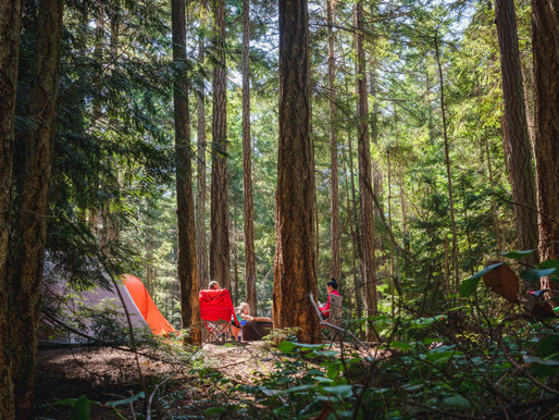 It's Not Too Late to Get a Campsite in Ontario This Summer!