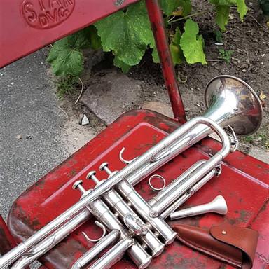 Idas trompet.jpg