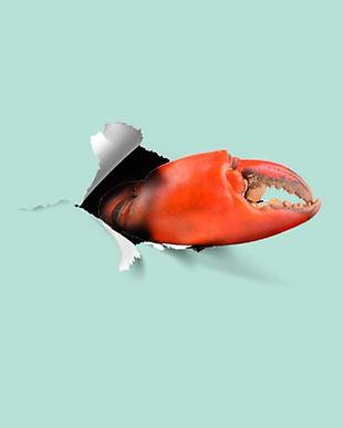 Crab-Night.jpg