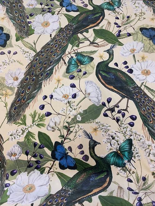 Peacock Velvet