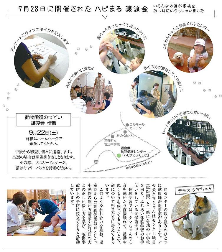 特集記事1.jpg