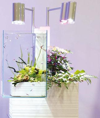右:淡水Brio水槽.jpg