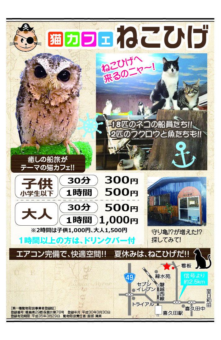猫ひげ様14.jpg