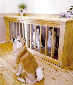工房夢蔵 愛犬家住宅 愛犬家住宅コーディネーター ドッグスペース 健康住宅 ペット住宅