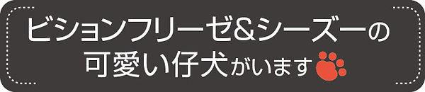 すかがわケンネル1.jpg