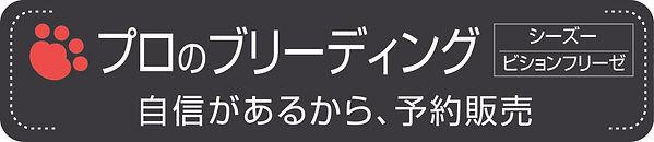 すかがわケンネルvol11タイトル.jpg
