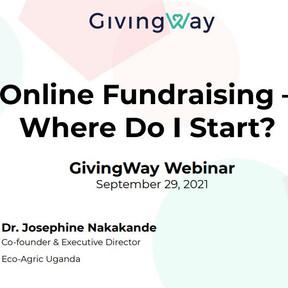 NGO Success Stories, Webinar Series:  Online fundraising - where do I start?