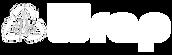 HDU Wrap Logo White Banner.png