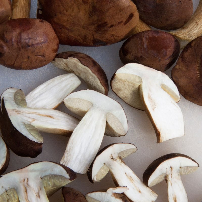 Mushrooms are a Good Source of Vitamin D