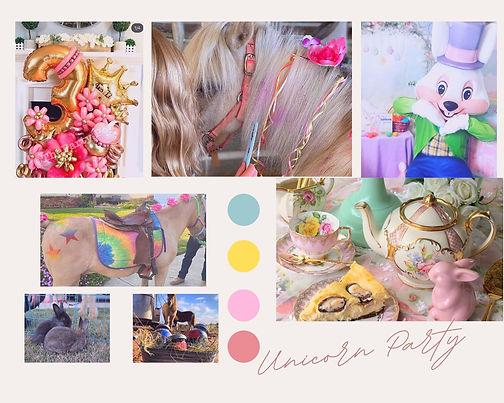 Unicorn_Pony Birthday Party.jpg