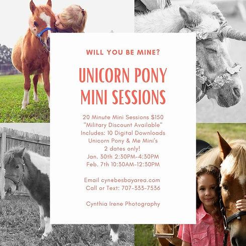 Will you be mine_ Pony Mini's.jpg