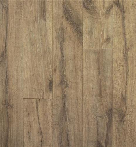 Jefferson Oak.jpg