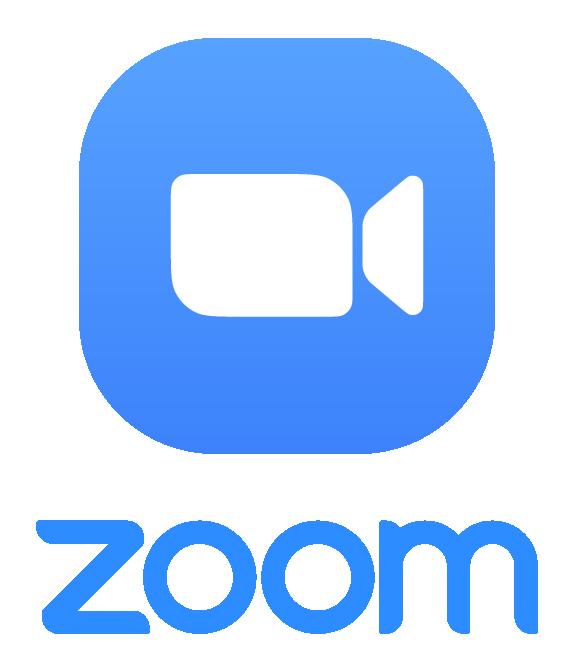 Group Custom Zoom Classes (5 +)