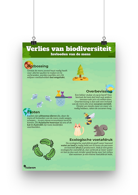 Verlies van Biodiversiteit