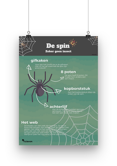Wandplaat - Spin