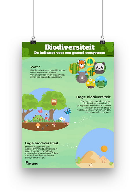 Wandplaat - Biodiversiteit