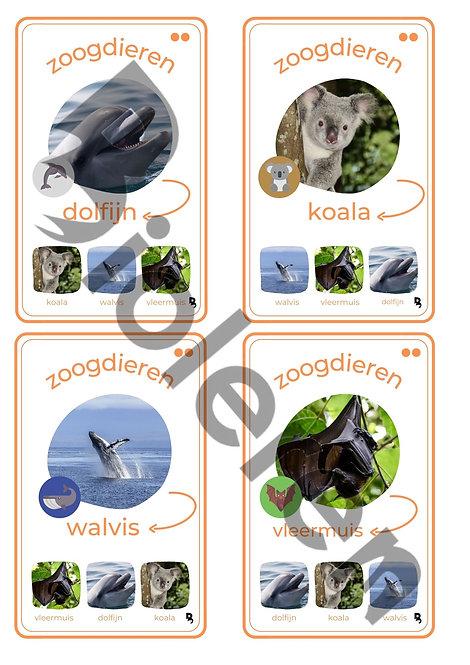 Kwartet - Gewervelde dieren UITBREIDING