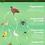 Thumbnail: Wandplaat - Voedselweb
