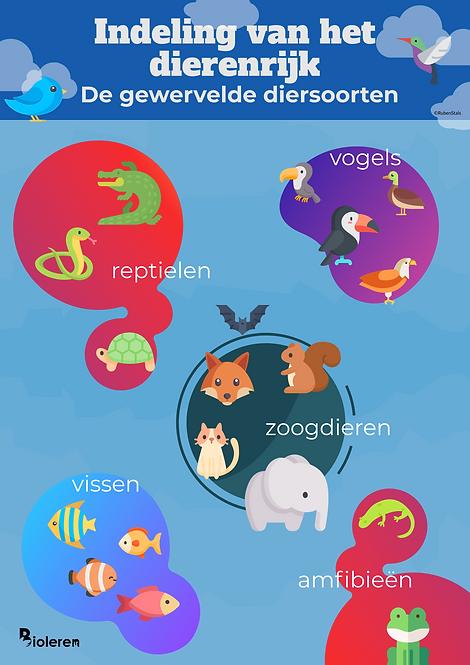Wandplaat - Gewervelde diersoorten