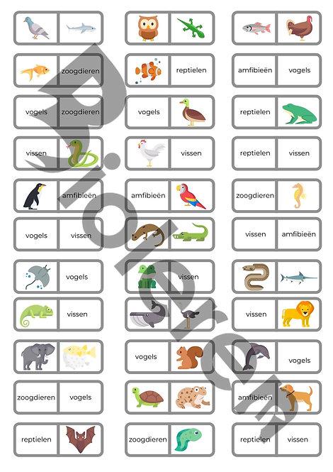 Domino - Gewervelde dieren