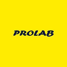 site-parceiros-prolab.png