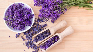 The-calming-effect-of-lavender-could-hel