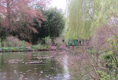 Monets garden.JPG