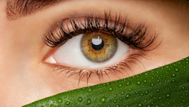 Lash Lifts- What are the Benefits?