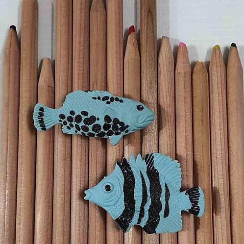Swim Fishy Swim magnet set