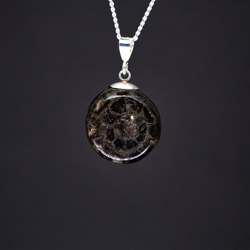 Ammonite & Jet Double-sided Pendant