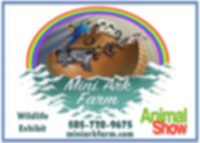 Mini Ark Farm Animal Farm at the kids Ex
