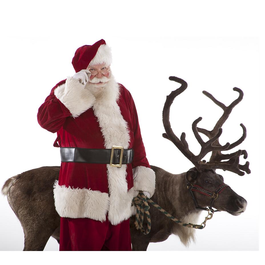 santa u0027s reindeer story how the reindeer got their names