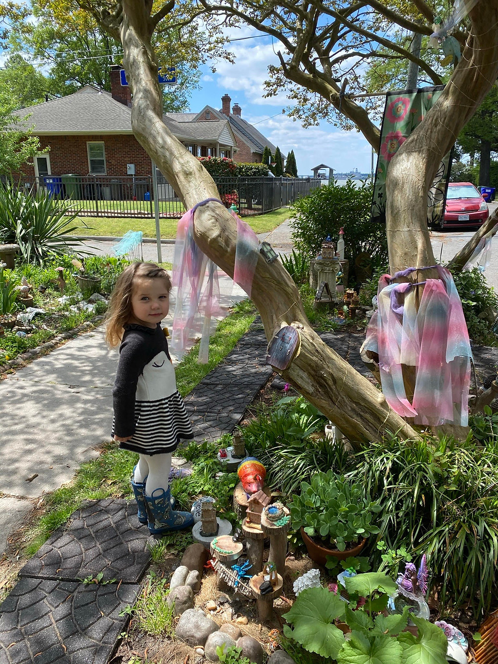 A young child looks back at the camera from their position exploring near the fairy tree, a twisty tree with various fairy and gnome statues, some ribbons and scarves, and a door into the trunk by one of the knots.